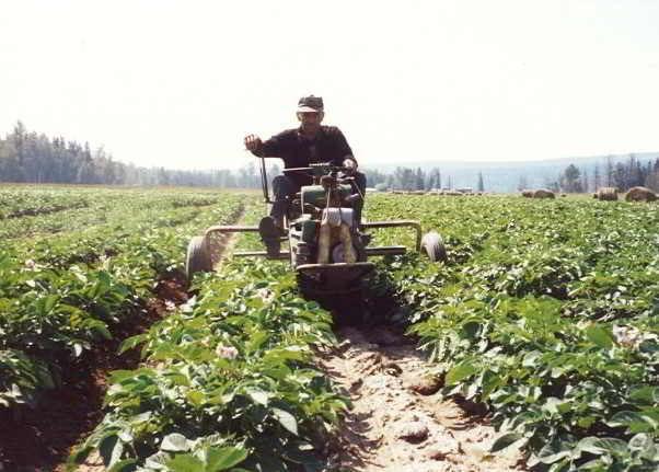 A Prince George potato farmer for over 70 years, John Ryser once won the potato section of the BC Provincial Seed Fair for thirteen years in a row.