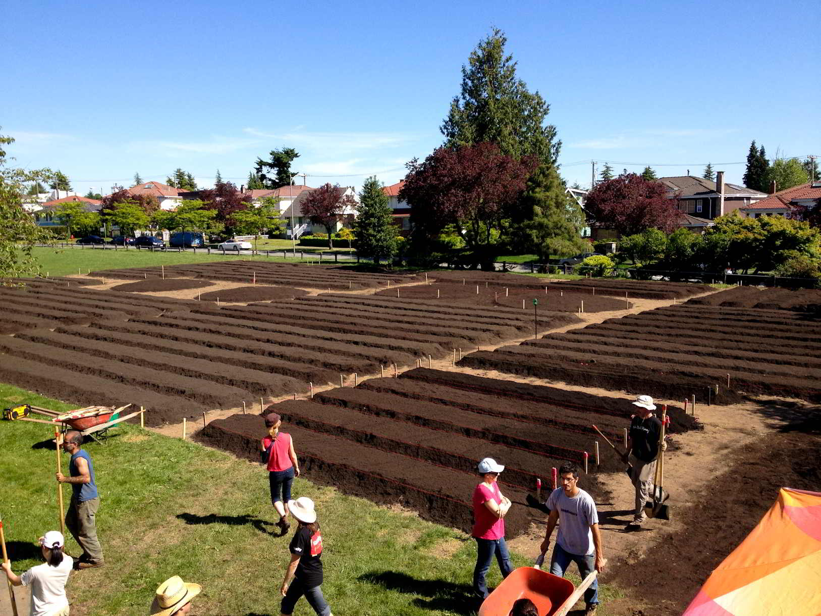 Fresh Roots Urban Farm-7