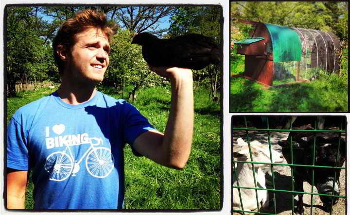 Southlands Farm YAblog