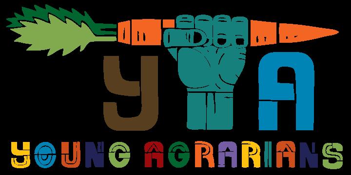 YA-LOGOcolortextured-oct18