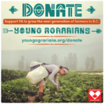 Support YA this Giving Tuesday – Nov. 29