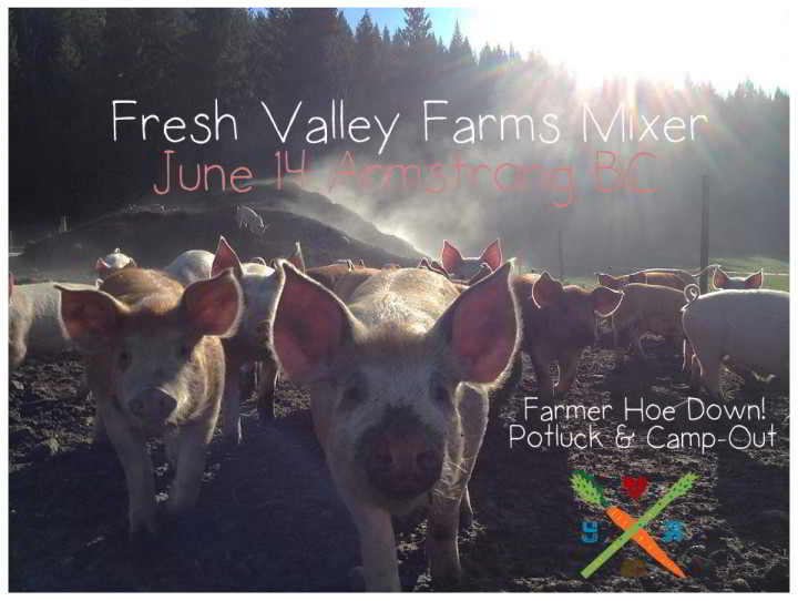 Fresh Valley Farms Pigs