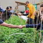 May 10 – Metro Van Urban Farm Mixer!