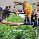 May 10 – Metro Van Urban Farm Mixer!