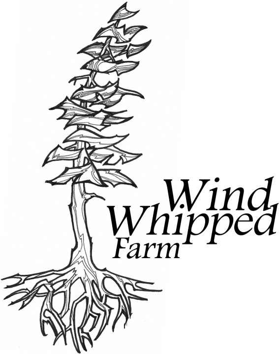 WindWhippedFarmLogo
