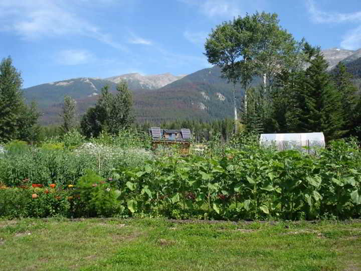 Robson Valley Fresh Farms