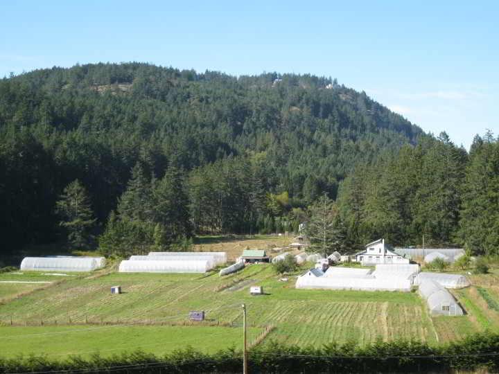 Uminami Farm Panoramic Shot