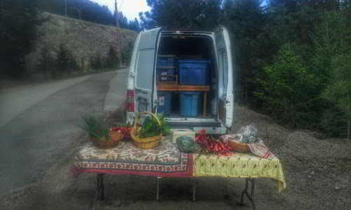 Humble beginnings for the inaugral farmgate market at the top of the driveway.