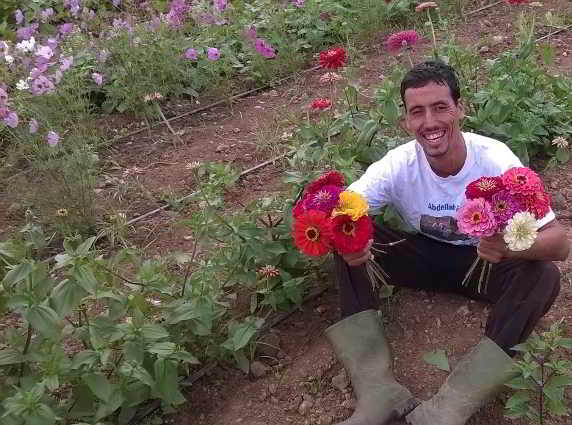 Young Agrarian Abdellah Boudhira holding handfuls of flowers on his organic farming operation in Morocco
