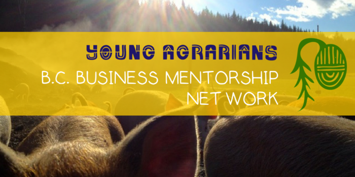 New Farmers Apply for Farm Business Support through Young Agrarians Mentorship Network
