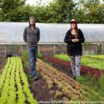 Mason Street Farm 2015 Apprenticeship Program