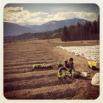 Growing Kootenay Farmers – February 2015 Events