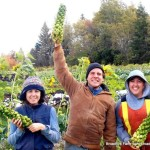 The National New Farmer Coalition needs you!