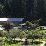 INTERNSHIPS: Providence Farm, Cowichan Valley, BC