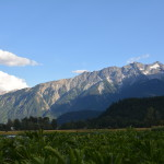 JOB: Plenty Wild Farms, Pemberton, BC