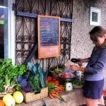 CSA Talk Shop – Vancouver Urban Farming Society