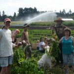 PAID TRAINING: Cowichan Agriculture Training Project, Duncan, BC