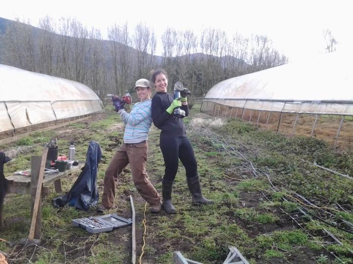 Shady Acres Farm Richmond
