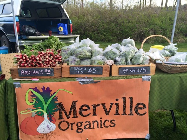 Merville Organics Sign - Pie Potluck Young Agrarians Event