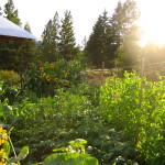 LAND: Organic Farm & House for Lease, North Okanagan, BC