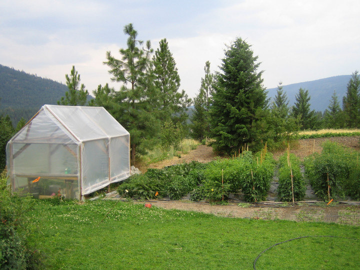 Certfied Organic Land for Lease Young Agrarians