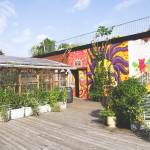 Nourishing a Community: Urban Agriculture at Santropol Roulant