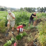 A Head Start for New Farmers in the Central Okanagan