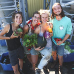 Summer 2016 Garden Internship, McGill, Quebec