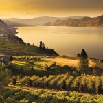 Climate Change Adaptation Planning in the Okanagan – December Workshops