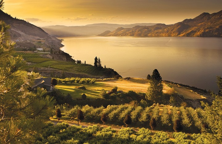 BC Agriculture & Food Climate Action Initiative