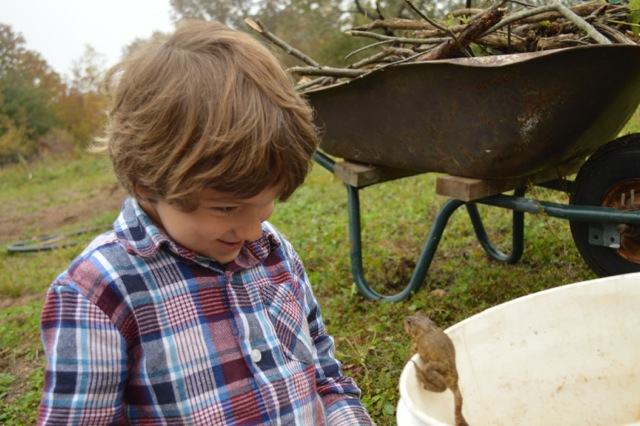 A child peers at a frog on Granite Bay Farm on Quadra Island