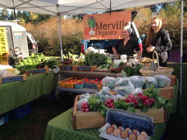 Merville Organics - Robin Market