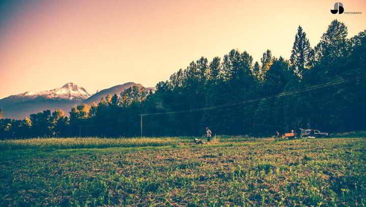 Nutrient Dense Farm Fields & Mountains