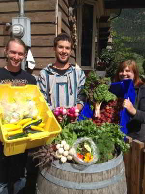 colourful harvest by farm interns at Golden Ears Farm