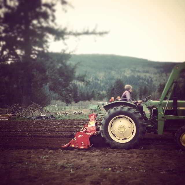 Tractor time at Shalefield Organic Gardens, a biodynamic farm, in Lindell Beach, BC