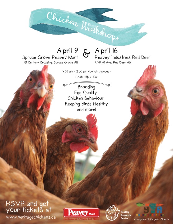 Small Flock Chicken Workshop Poster