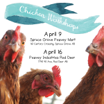 April 9 & 16: Small Flock Chicken Workshops in Spruce Grove & Red Deer, AB