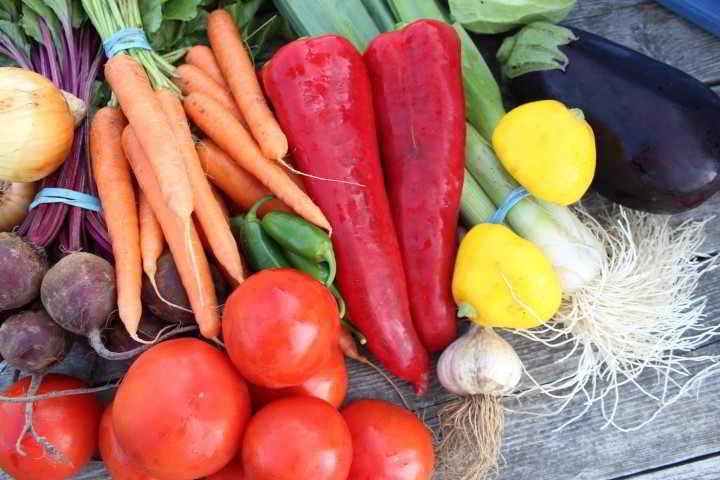 Our little farm produce