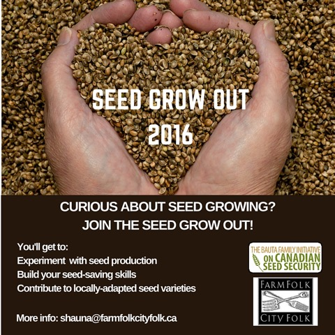 SEED GROW OUT 2016