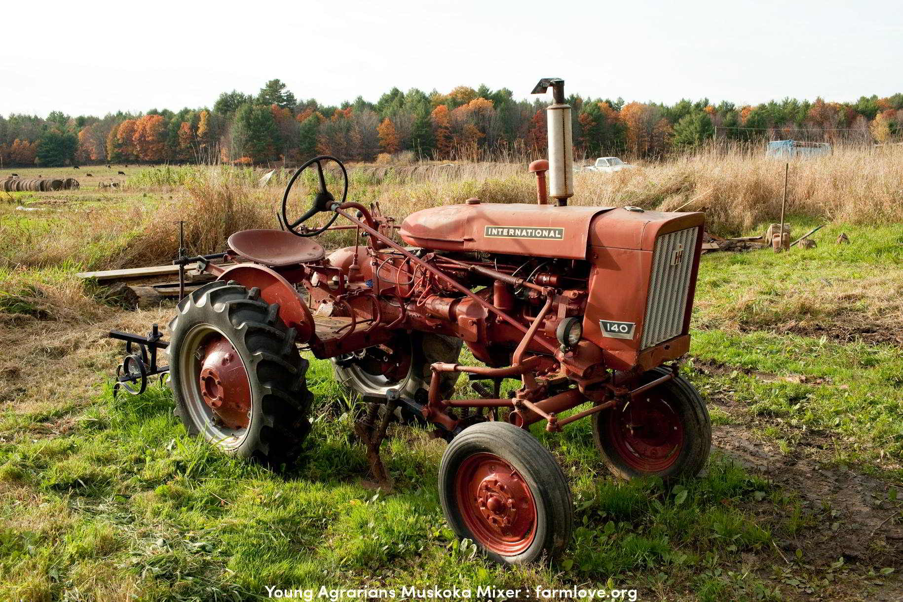 Job Young Agrarians Land Match