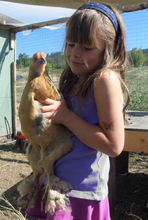 Morganne and the chicken at Clubhouse Farm, Kelowna.