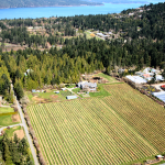 FARM JOB: Blueberry Packing, Ruby Red Farms, North Saanich, BC