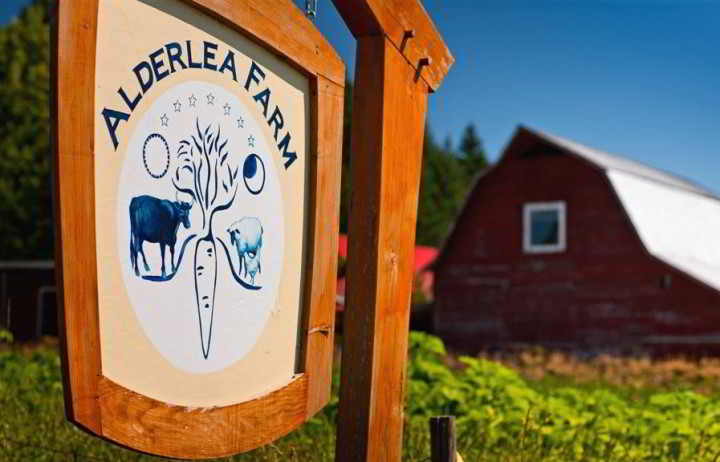 Farm Events Alderlea Farm Duncan BC