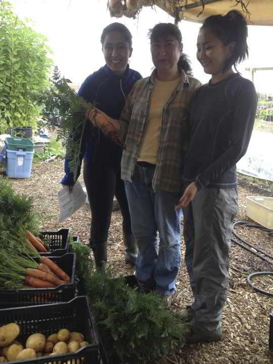 Farm Jobs Earth Apple Farm