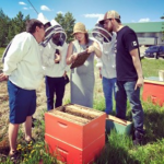 OCT 29th & 30th – FERINTOSH, AB Level 1 Beekeeping Certificate Course with Eliese Watson