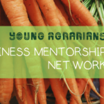 BC Business Mentorship Network – Apply Now!