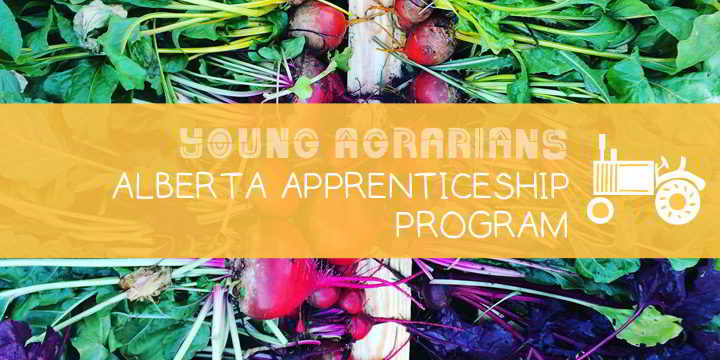 Apprenticeship-Young-Agrarians-2018