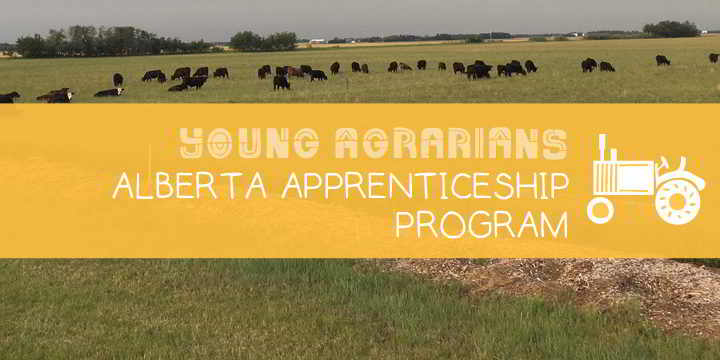 Apprenticeship-Young-Agrarians-Natures-Way-Farm