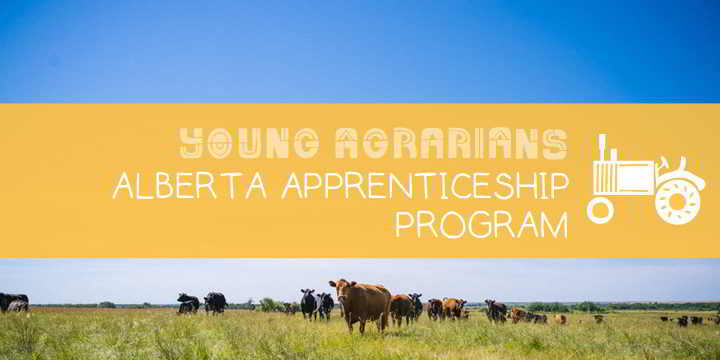 Apprenticeship-Young-Agrarians-Redtail-Farm