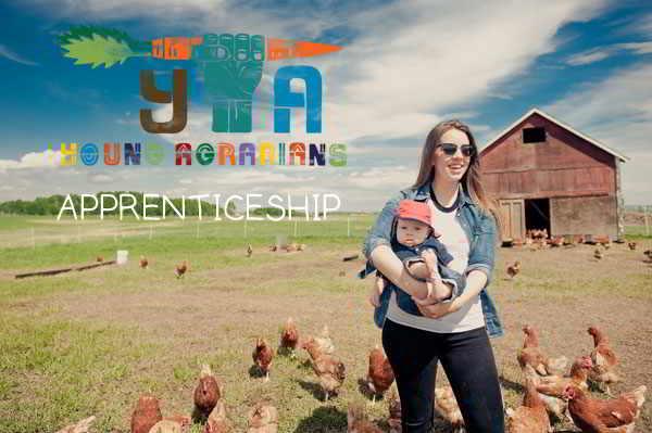 prairie-gold-pasture-meats-apprenticeship